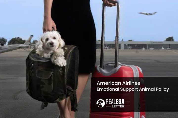 American Airlines Emotional Support Animal Policy