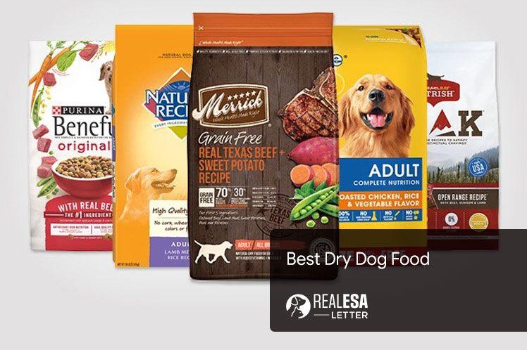 Best Dry Dog Food | Top Brands in 2021