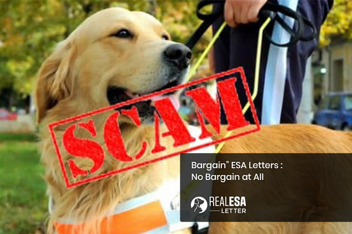 "Bargain"" ESA Letters: No Bargain at All"