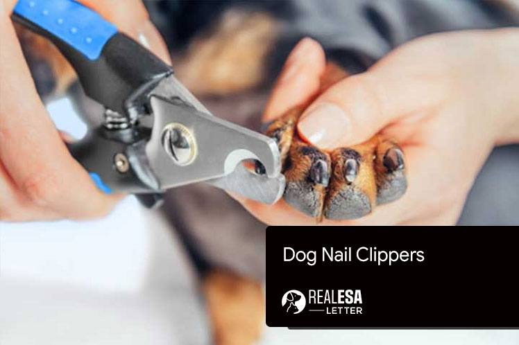 2021 Best Dog Nail Clippers for your Pet and ESA Dog