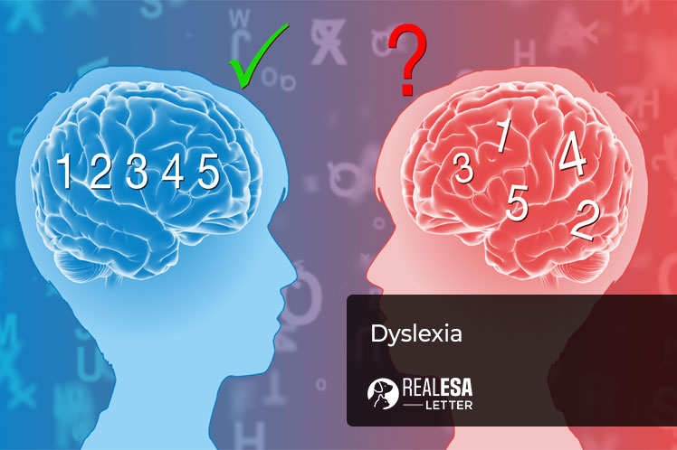 What is Dyslexia - Symptoms, Types, and Treatment