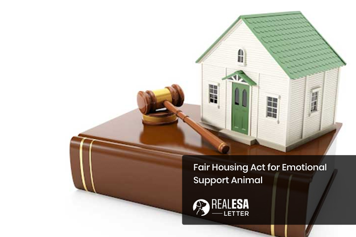 Fair Housing Act for Emotional Support Animal