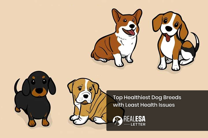 Top Healthiest Dog Breeds with Least Health Issues