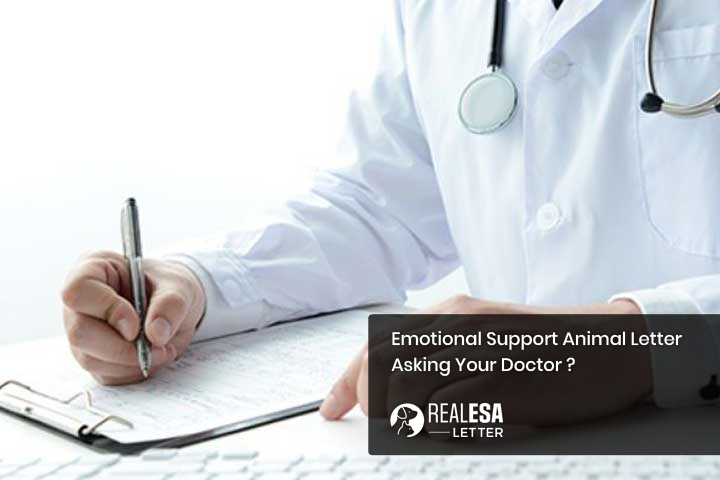How to Ask Doctor for Emotional Support Animal Letter