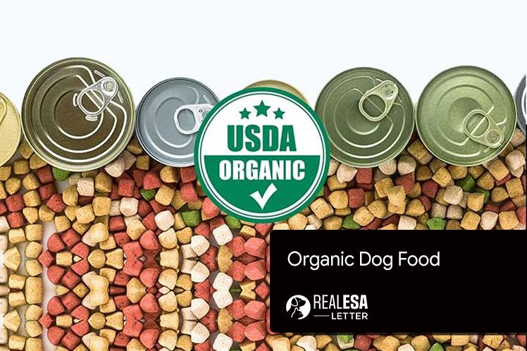 Best Organic Dog Food Brands in 2021