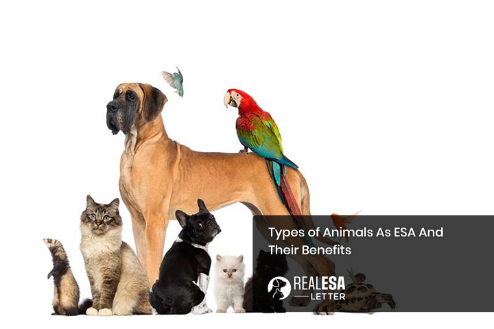 Types of Animals As ESA And Their Benefits